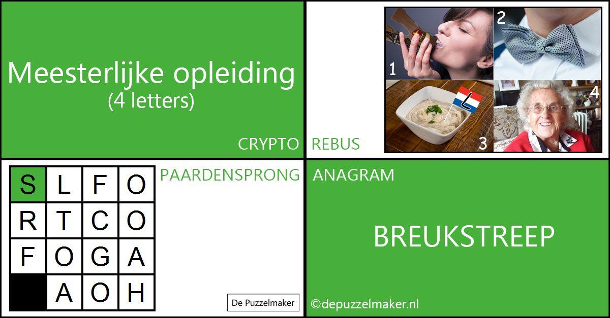 Marije van Asselt De Puzzelmaker puzzel Puzzels Denksport meester mark crypto rebus paardensprong anagram beeldpuzzel facebook